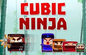 Cubic Ninja: square everyday warrior invisible